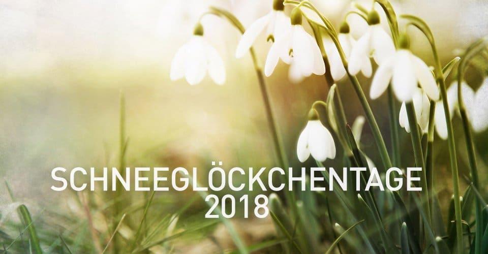 Garten Ehren schneeglöckchentage 2018 garten ehren was wo finden