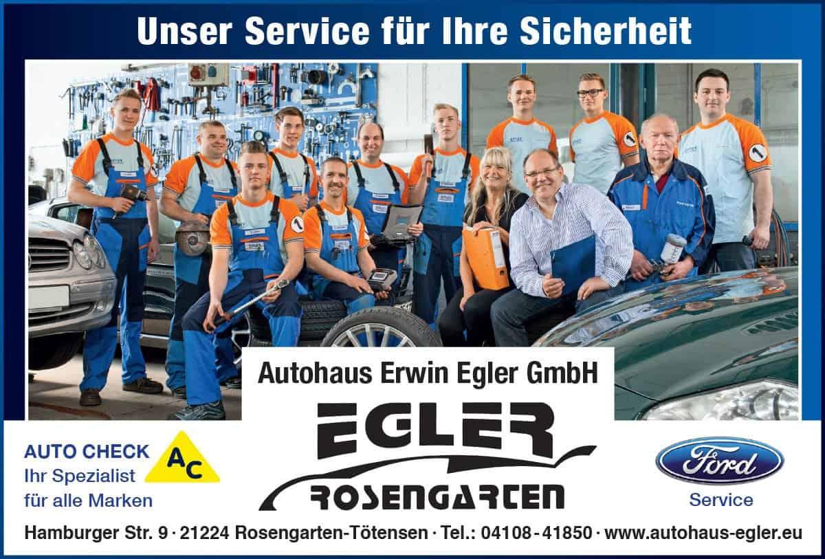 Auto Check Nordheide – Autohaus Erwin Egler