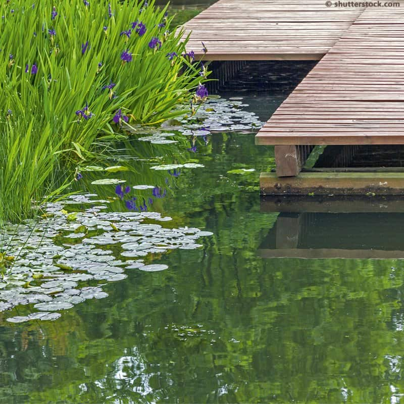 Garten- und Landschaftsbau in der Nordheide